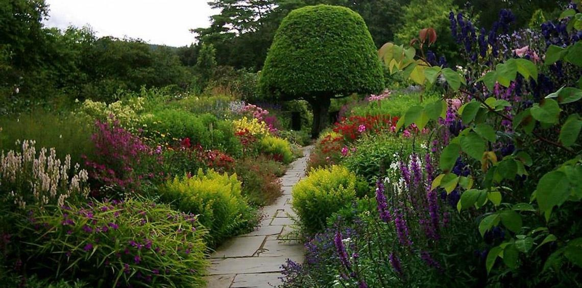Crathes Garden - The Rare and Endangered Plants of Crathes